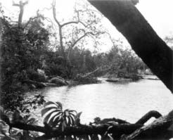 mgm studio still showing the creek