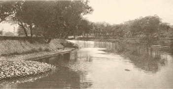 Ballona Creek, early 20th century