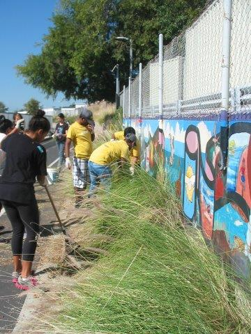 Sony volunteers dig out and remove the invasive nonnative grasses that obscured the Postcards from Ballona mural, first constructed by BCR in 1997.