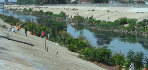 Photo of the creek at Centinela Ave before vegetation removal.